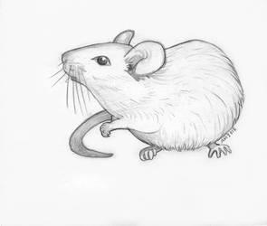White mouse by Reta-Rees