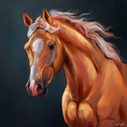 Portrait horse by EvGolverk