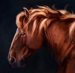 Pony portrait by EvGolverk
