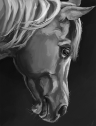 Study by EvGolverk