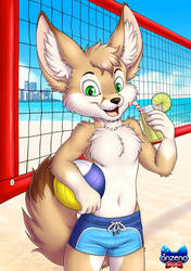 Let's play beach volleyball by Onzeno