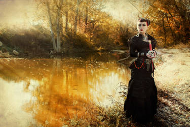 lady in black3 by Selenittt
