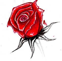 Rose2 by BeryllBat