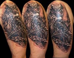 Owl by Zsolt Sarkozi at Dublin Ink by DublinInk