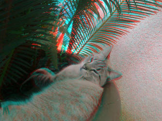 Cat-Paris Anaglyph by ZPsyc0