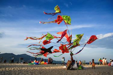 Kites on the beach by 2000lightyearsaway