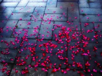 Rose Petals by JulieRaven