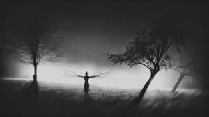 Dream Aid by bliXX-a