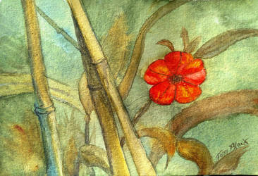 Red Flower and Bamboo by Bigsteel