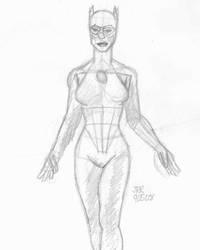 DSC Catwoman by DarkKnightJRK