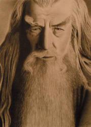 Gandalf The Grey by WeHaveTheSameFace