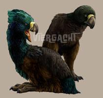 Ankur Terror Birds by Viergacht