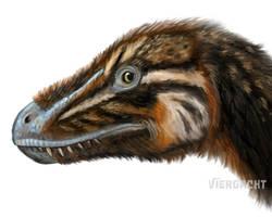 Dinovember - Juvenile Tyrannosaurus speedpaint by Viergacht