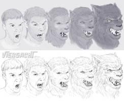 Werwolframl TF sketch by Viergacht