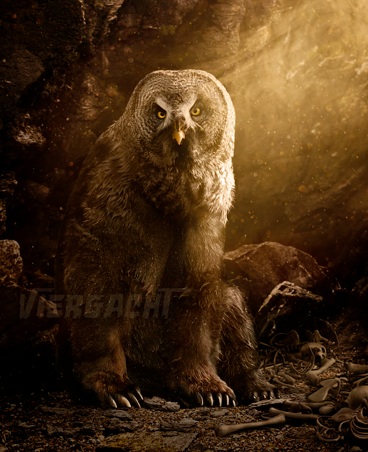 Owlbear by Viergacht