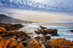 Point Lobos -1 by KBL3S
