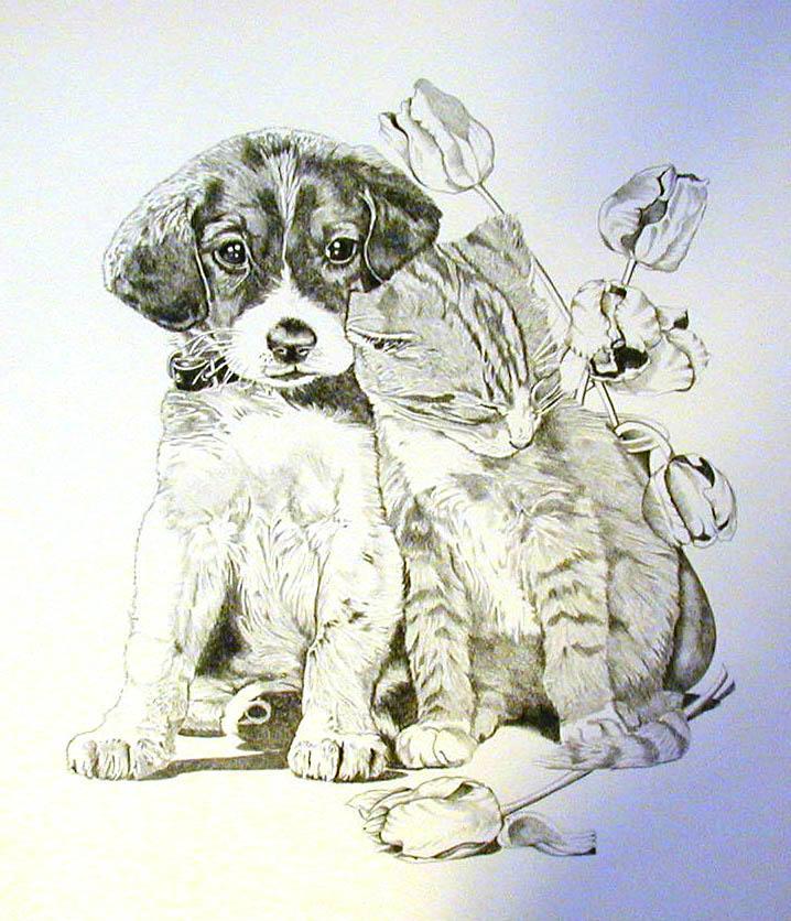Puppy and Kitten by BeckyLiv by BeckyLiv