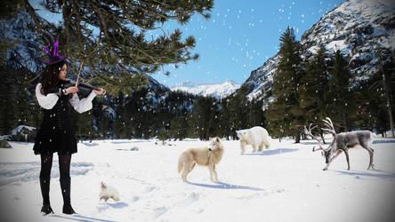 Winter Meeting by nomadOnWeb