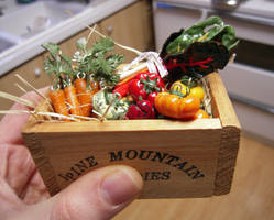 Box of Happy Vegetables FINISHED!! by lily-inabottle