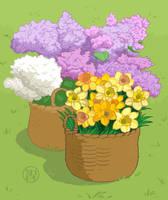 Flowers by Kairu-Hakubi