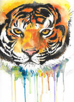 Watercolour Tiger by Gotashi-Chan