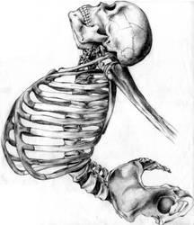 Back Pain by pookasimon
