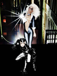 Blak Cat And Catwoman by halcon8