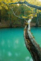 autumn landscape by val-shevchenko