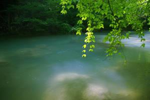 Green by val-shevchenko