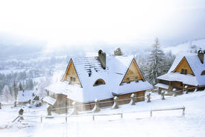 Winter Dream by val-shevchenko