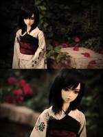 . chasing shadows . by asainemuri
