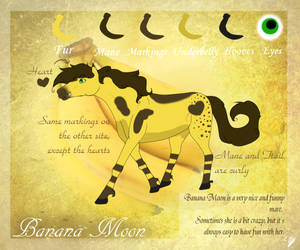 Banana Moon reference sheet by Klazin