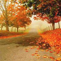 Paisaje 12 Fall by stylefashion