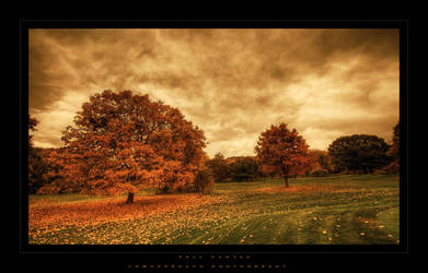 Fall Canvas by lowapproach