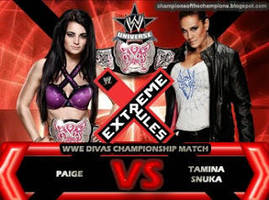 WWE Extreme Rules 2014 by Jahar145