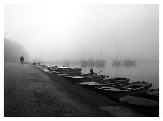 Foggy morning by GoranM