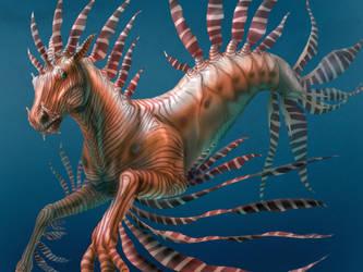 Seahorse by SMcNonnahs