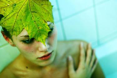 fall-feelings by Flotograf