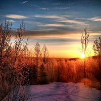 My Morning by WynterWonderer