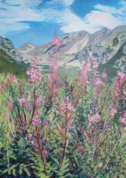 High Tatras Wild Flowers by TArthurSmith