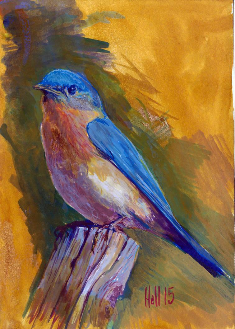 bird sketch by charles-hall