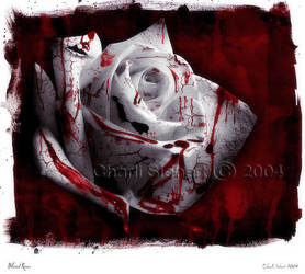 Blood Roses by pharie82