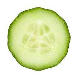 Round Cucumber by SupremeNoob