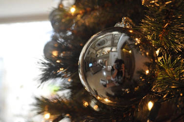 Christmas Ball captured by gladioladp