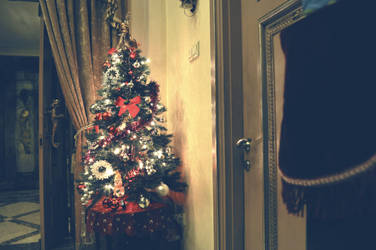 Lonely Christmas Tree by gladioladp