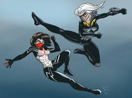 Silk vs Black Cat by DavidSerret