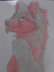 Zoe furry  character by AngelAizen