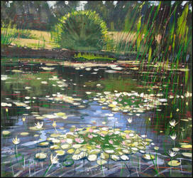 WATER-LILIES IN THE MIRROR OF THE POND by Badusev
