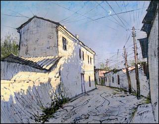 SIMFEROPOL, 6 BOLSHOI STREET by Badusev