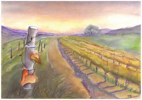 Vineyard by nellusatko